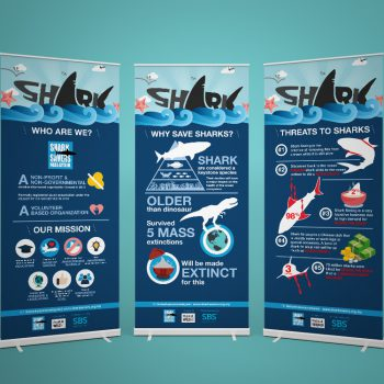 Shark 101 (Presentation)