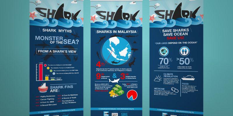 shark savers malaysia bunting 02
