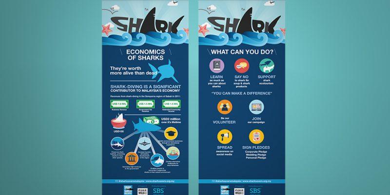 shark savers malaysia bunting 03