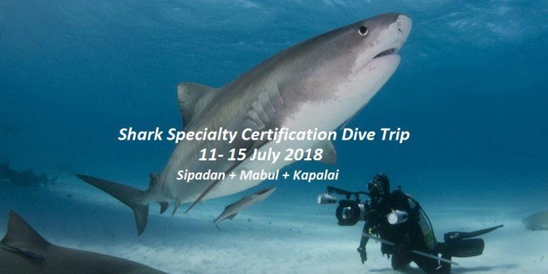 Sipadan Specialty Dive Trip 2018